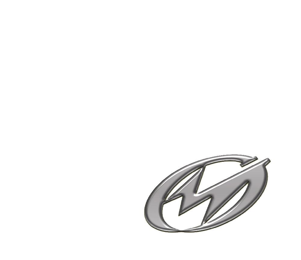 Gemini Logo Silver n